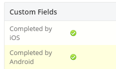 Custom-fields-info